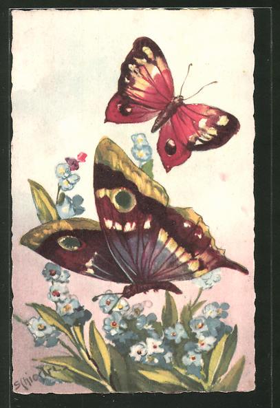 Künstler-AK Carlo Chiostri: Zwei Schmetterlinge mit Blumen