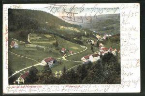 AK Freudenstadt, Blick ins Christophsthal