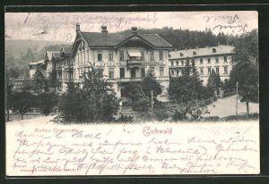 AK Eichwald, Kurhaus Theresienbad