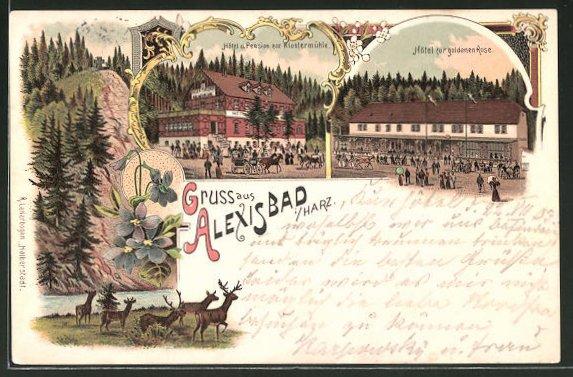 Lithographie Alexisbad, Hotel Pension zur Klostermühle, Hotel zur goldenen Rose, Hirsch