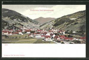 AK Todtnau, Ortspartie im Gebirge