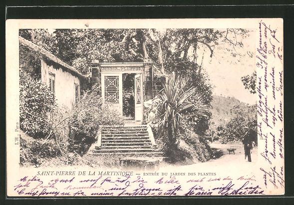 AK Saint Pierre de la Martinique, Entrée du Jardin des Plantes