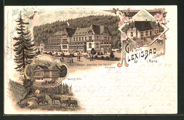 Lithographie Alexisbad, Hotel Försterling, Herzogl. Villa, Badehaus