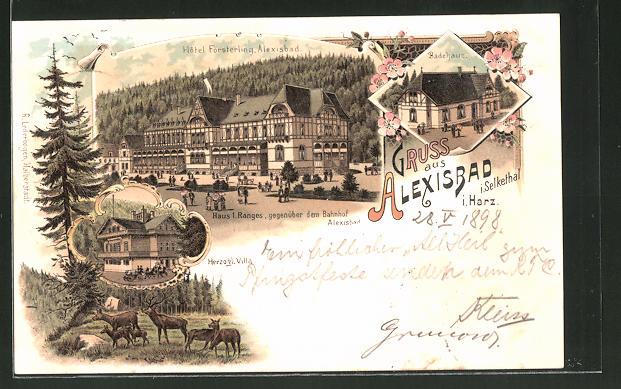 Lithographie Alexisbad i. Harz, Hotel Försterling, Herzogl. Villa, Badehaus