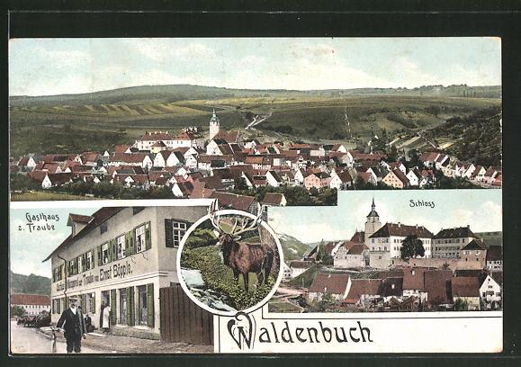 AK Waldenbuch, Totalansicht, Gasthaus zur Traube, Blick auf's Schloss