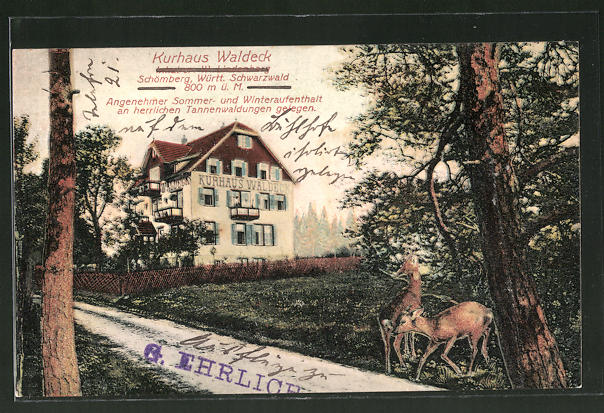 AK Schömberg, Kurhaus Waldeck, Rehe