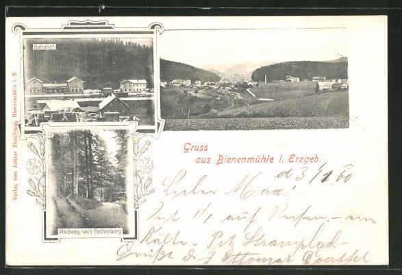 AK Bienenmühle i. Erzgebirge, Bahnhof und Waldweg, Ortspartie