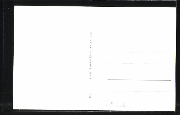 AK Allendorf-Hohenfels, Wirtschaft v. W., Jacobi, Ortspanorama 1