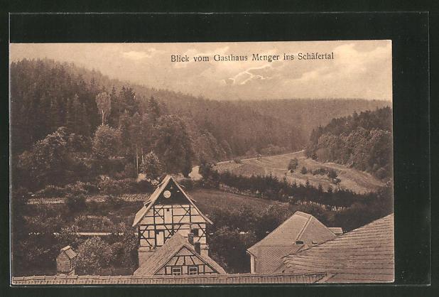 AK Paulinzella, Blick vom Gasthaus Menger ins Schäfertal