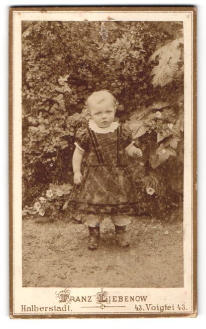 Fotografie Franz Liebenow, Halberstadt, Portrait Kleinkind im Freien
