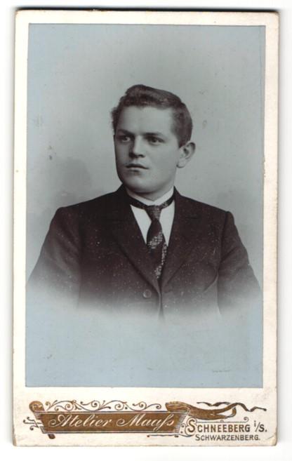 Fotografie Atelier Maass, Schneeberg i/S, Portrait junger Mann in Anzug