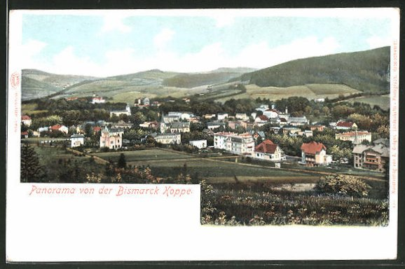 AK Bad Landeck, Panorama von der Bismarck Koppe