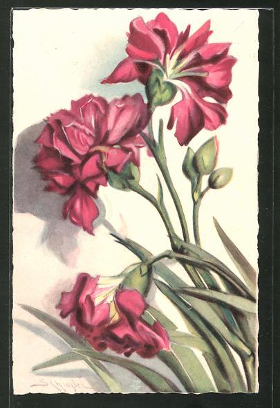 Künstler-AK Carlo Chiostri: Rote voll erblühte Nelken