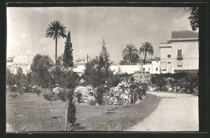 Fotografie Fotograf unbekannt, Ansicht Sevilla, Partie im Alcázar Schlosspark