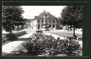 AK Pinkafeld, Blick zum Denkmal