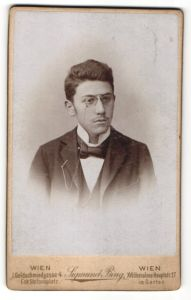 Fotografie Sigmund Bing, Wien, Portrait Bürgersohn in Anzug mit Zwicker