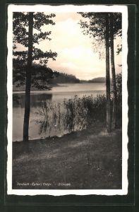 AK Deutsch Eylau / Ilawa, Blick auf den Silmsee