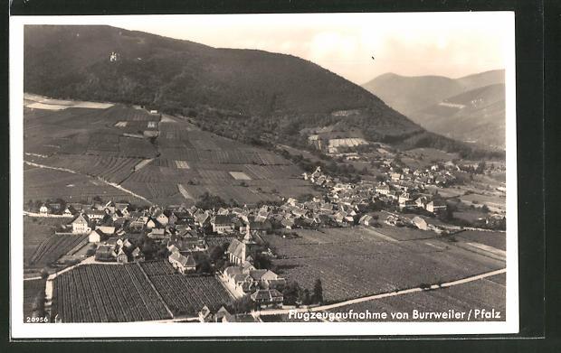 AK Burrweiler / Pfalz, Totalansicht vom Flugzeug aus