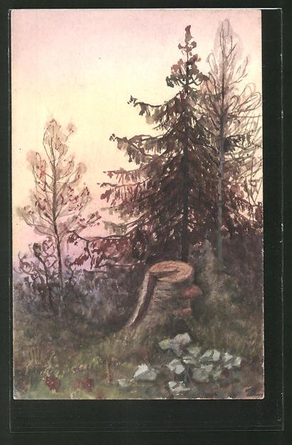 Künstler-AK Handgemalt: Waldpartie mit einem Baumstumpf
