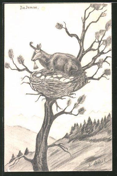 Künstler-AK Handgemalt: Gams sitzt auf einem Vogelnest im Baum