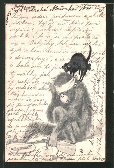 Künstler-AK Handgemalt: Affe mit Kopfbinde, Fisch & Katze auf dem Buckel, Trinkerhumor