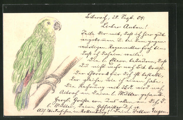 Künstler-AK Handgemalt: Grüner Papagei auf einem Ast
