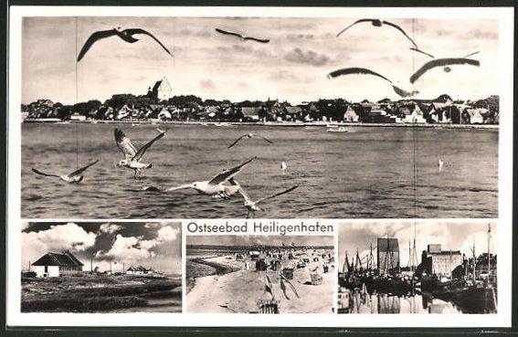 AK Heiligenhafen, Partie am Hafen und am Strand