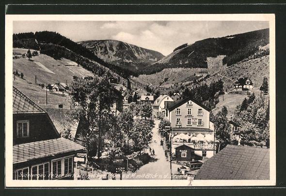 AK Petzer, Teilansicht mit Häusern und Riesengebirge