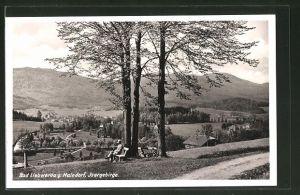 AK Bad Liebwerda / Lazne Libverda, Teilansicht der Ortschaft im Isergebirge
