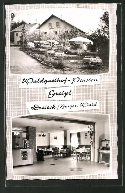AK Dreieck / Bayer. Wald., Waldgasthof-Pension Greipl, Innenansicht