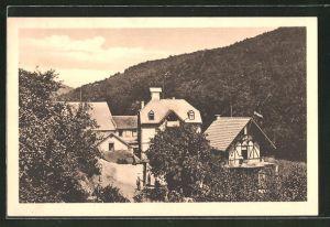 AK Schlangenbad, Ländl. Pension und Restaurant Baumann's Hof, Bes. Mila Baumann
