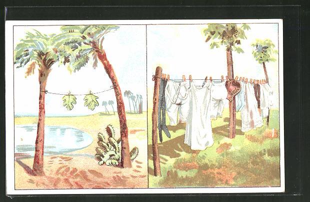 AK Wäsche auf der Leine früher und heute - Feigenblätter und Leinenschlüpfer