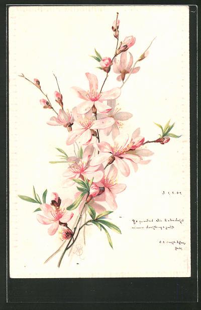Präge-Künstler-Lithographie M. Billing: Blühender Zweig