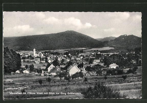 AK Merzalben / Pfälzer Wald, Totalansicht mit Blick zur Burg Gräfenstein