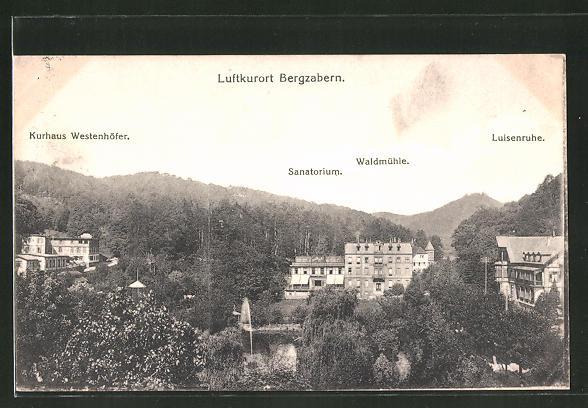 AK Bergzabern, Panorama mit Sanatorium, Waldmühle, Luisenruhe & Kurhaus Westenhöfer