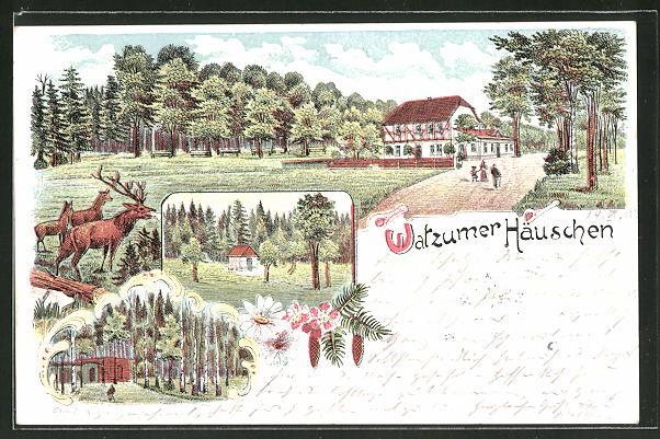 AK Watzum, Watzumer Häusschen am Waldrand mit Hirschen