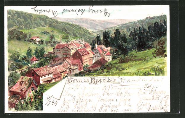 Künstler-AK Carl Biese: Rippoldsau, Panoramablick auf die Ortschaft