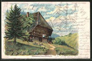 Lithographie Schwarzwaldhaus, Halt gegen das Licht