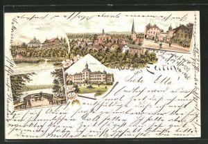 Lithographie Eutin / Holst. Schweiz, Holst. Schweiz Hotel, Gasthaus Voss-Haus, Schloss