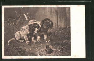 Künstler-AK Hundewelpen beobachten Frosch