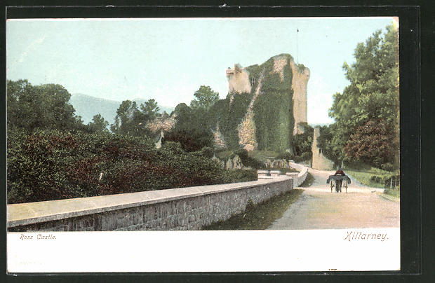 AK Killarney, Partie am Ross Castle