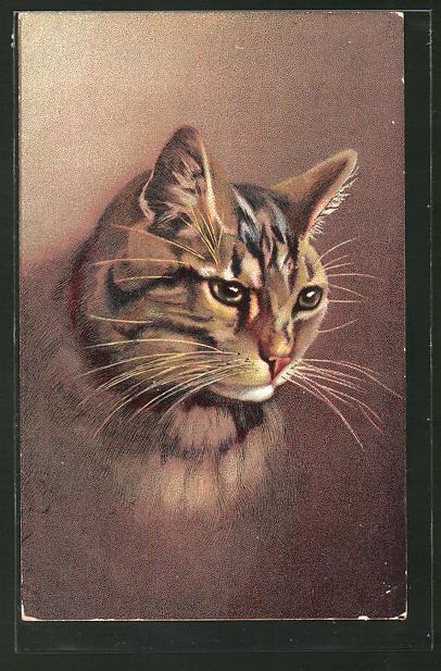 AK Kopf einer getigerten Katze