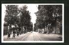 AK Tours, Radfahrer auf der Avenue de Grammont