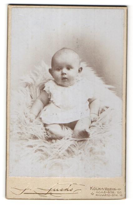 Fotografie J. Fuchs, Köln / Rhein, niedliches Baby auf Felldecke sitzend