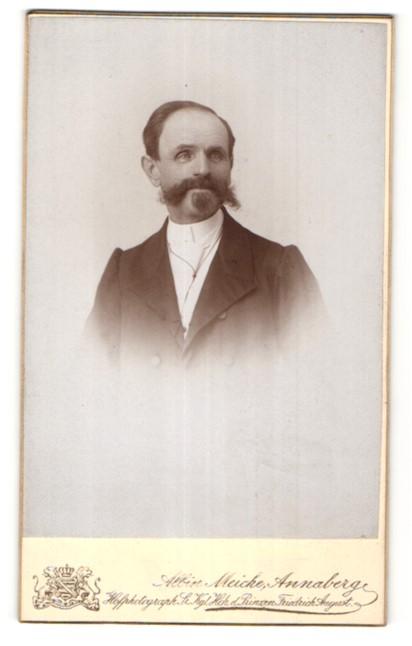 Fotografie Albin Meiche, Annaberg, Portrait älterer Herr mit Bart im Anzug