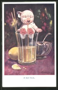 Künstler-AK George Ernest Studdy: Bonzo, A Soft Drink