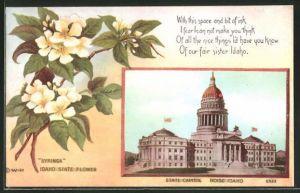 Passepartout-AK Boise, ID, State Capitol
