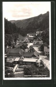 AK Falkenstein / Bayern, Ortsansicht aus der Vogelschau