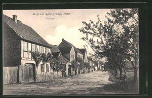 AK Schweinitz / Elster, Strassenpartie Forsthof