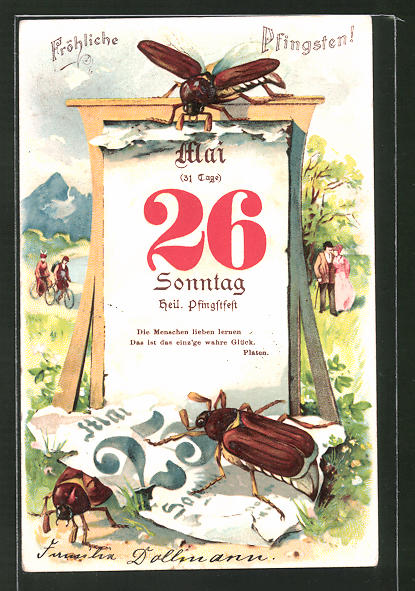 Lithographie Fröhliche Pfingsten!, Maikäfer und Kalender